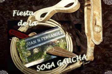 soga-gaucha