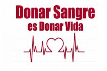 camp donacion sangre